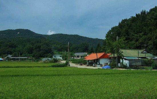 实拍韩国山谷中的农村房子