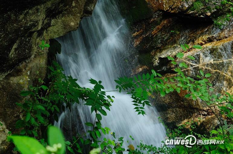 山水画卷 盛夏去朱雀国家森林公园里避暑