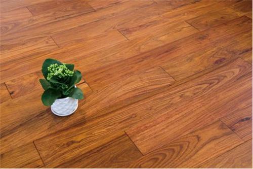 非洲花梨红木地板备受高端消费者用户青睐