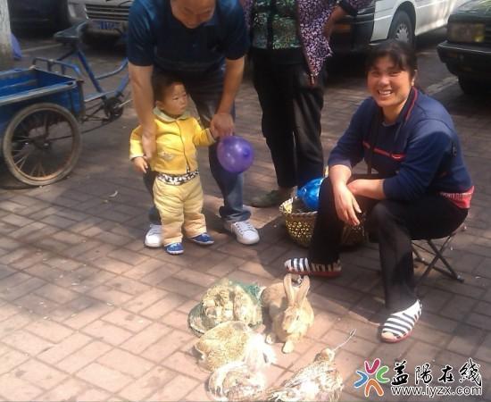 益阳一妇女路边贩卖野生动物