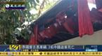 泰国普吉岛发生车祸 造成中国游客3死14伤