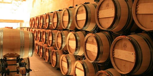 凤眼带你领略葡萄酒世界的魅力
