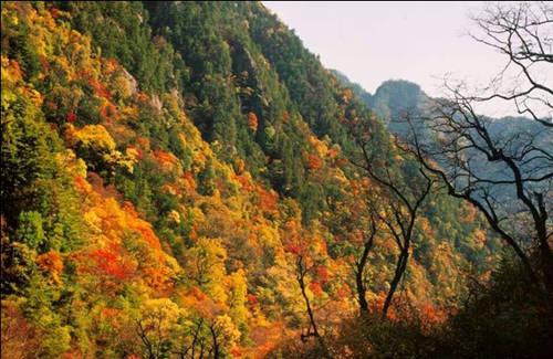红河谷 秦岭太白山最好玩的地方
