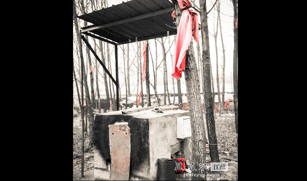 """焚烧炉周围的几棵树干上,系着红布条。Z先生解释说,这是当地农村的风俗,""""毕竟这也算是一桩'白事'。""""据他观察,前来火化宠物尸体的人,普遍个人素质较高,或者是饲养宠物十年以上,已经和宠物建立了深厚的感情。(凤凰网江苏--王剑/图)"""