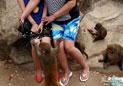 老外镜头下的中国游客