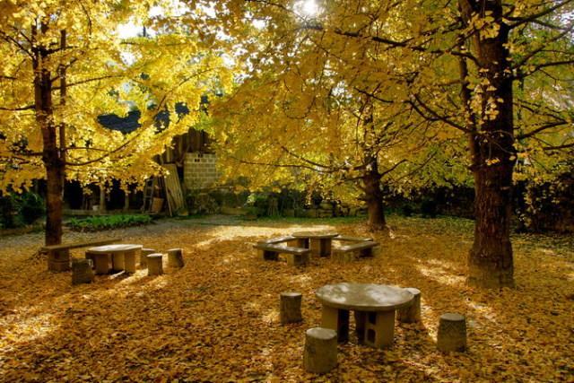 金秋十月去中国最美的地方享受美艳的好色之旅吧