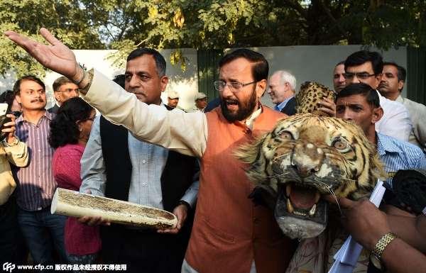 印度官员销毁野生动物制品