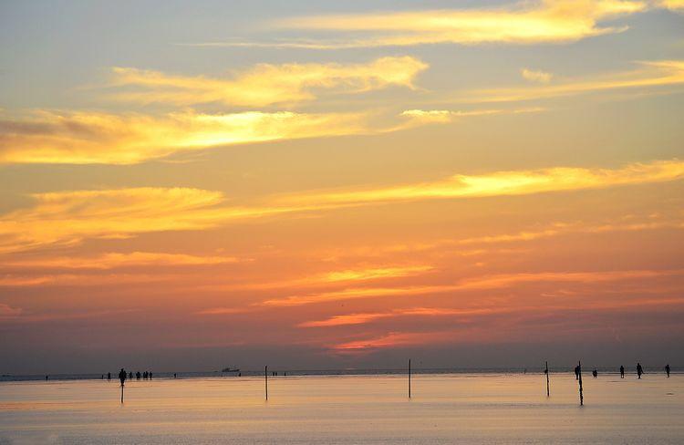 启东市圆陀角风景区始建于1998年,规划占地面积2100亩,位于长江