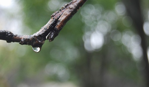 连续阴雨天如何健康养生
