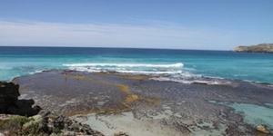南澳·阿德莱德