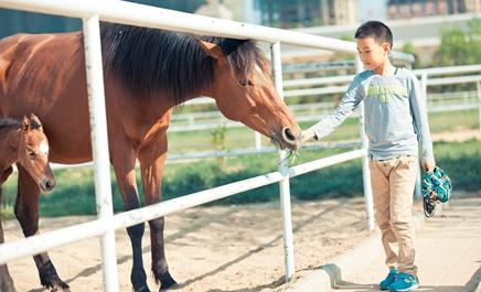 六一儿童节,与马儿亲密接触