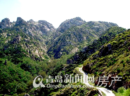 唐岛one背依小珠山国家森林公园的万顷苍翠