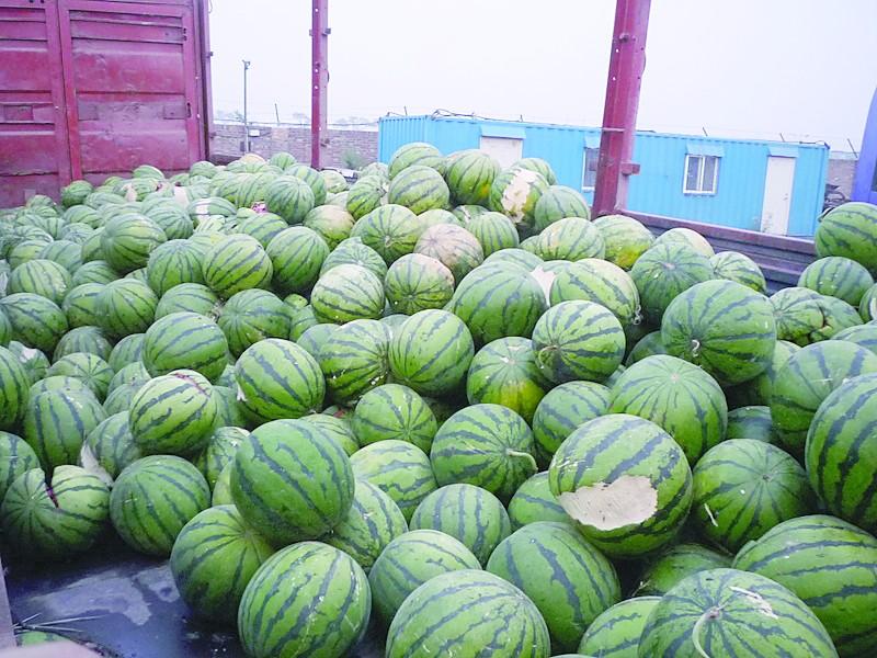 货车司机拒缴4万元施救费遭滞留 32吨西瓜腐坏