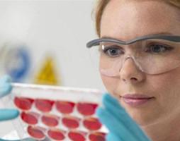 脐带血干细胞在治疗白血病上出现新突破