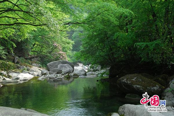 """光雾山夏 光雾山是一方神奇秀丽的自然山水。它以秀丽奇特的群峰为代表,苍翠茂密的森林植被为基调,集秀峰怪石、峭壁幽谷、溪流瀑潭、原始山林为一体,可集中概括为""""峰奇""""、""""石怪""""、""""谷幽""""、""""水秀""""、""""山绿""""五绝。光雾山风景名胜区有桃园、大坝、大江口、神门、小巫峡五大景区,主要景观360多处。景区内景色秀丽,步移景换,奇峰林立,沟壕纵横,谷幽峡,瀑布珠连,古木参天,红叶千里。著名诗人高平有诗"""