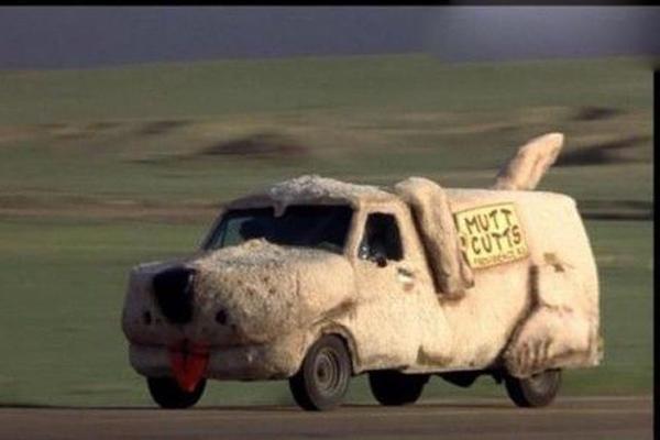 爱车盛装改造 搞笑可爱狗狗造型汽车