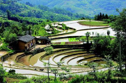 """物部门称为湖广移民开发陕南的""""活标本""""、中国农耕文化""""活化石""""图片"""