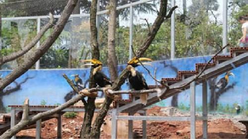 中国野生动物保护协会