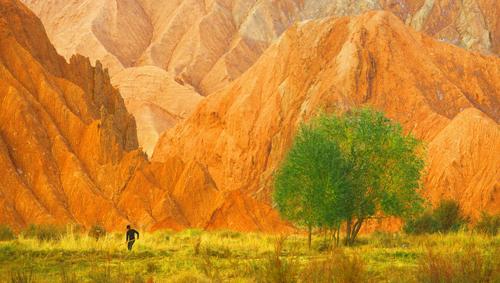走过新疆的大美四季