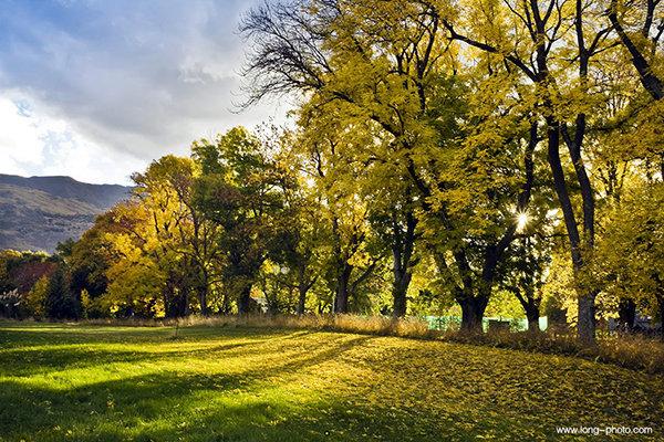 它与库克雪上遥相呼应山,每当日落时分,湖畔草地和金黄的银杏树被斜阳