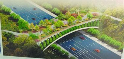 上半年青岛市城乡建委将完成环胶州湾沿岸绿道慢性系统规划设计并通过