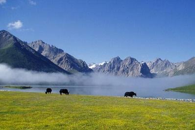 资讯 综合 > 正文   果洛 果洛藏族自治州境内山河壮里丽,风景优美