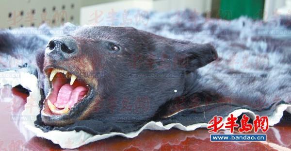 处通报了该起非法邮寄国家二级保护动物黑熊皮案件