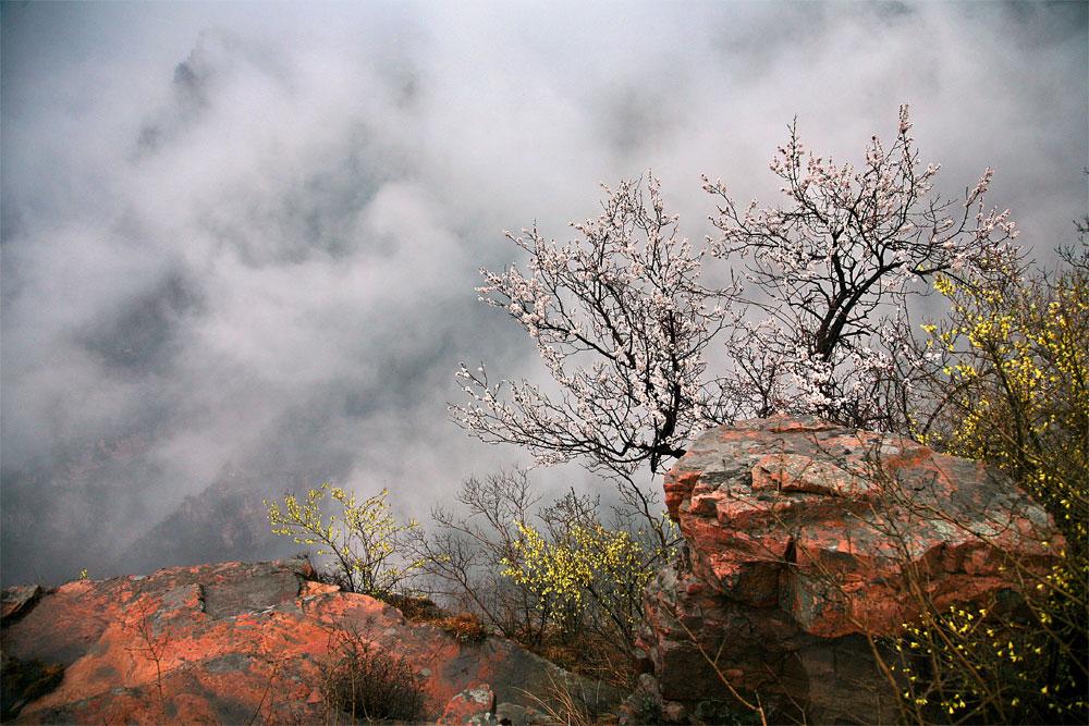 太行大峡谷风景区位于河南省西北部,南太行山东麓的林州市石板岩乡
