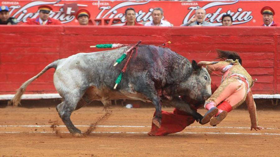牛牛游戏中心下载:葡萄牙的斗牛有哪些?