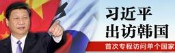 习近平访问韩国