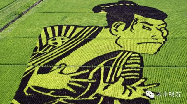 每个主题都隐含着独特的意义。例如主题富士山和羽衣传说:日本民间流传着类似羽衣传说的仙女故事,画面中一同呈现的三保松原和富士山,正是仙女降临之地。村民们用青森大米、古代米等10个品种7种颜色的作物在1.5公顷的稻田中种出了世界遗产富士山、翩翩起舞的天女和海螺小姐一家。