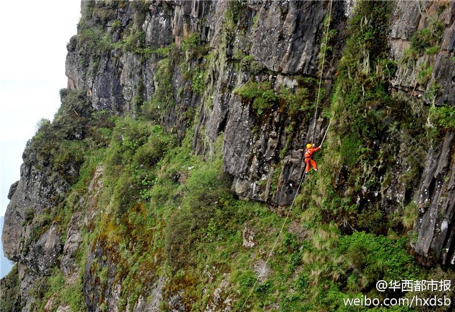 峨眉山清洁工攀3079米绝壁清垃圾_资讯频道_凤凰网