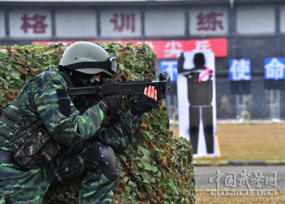 武警四川总队一支队特战队员、女子特警队员、成都市公安特警特战图片