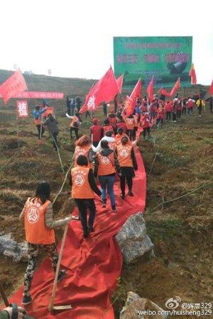 湖南永州踩红地毯植树林业局长被通报 - 老林 - 老林的博客