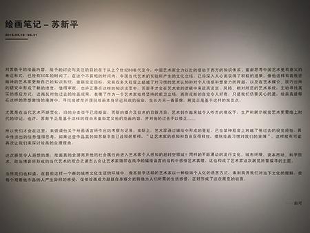 俞可:苏新平重新定义了他的绘画内容