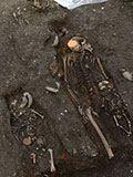 安阳村民浇地出怪事 意外发现地下三国大墓