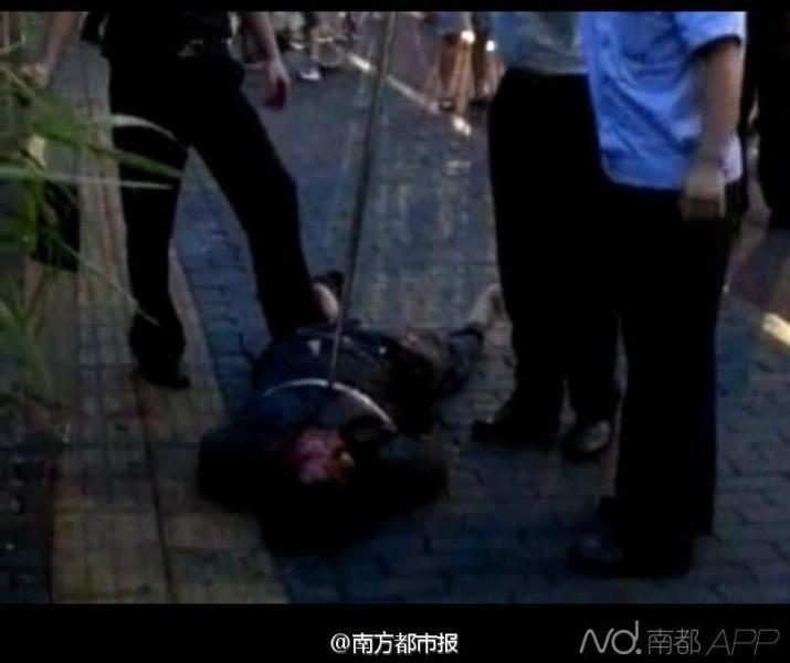 深圳疑似精神病男子当街砍6人 致一男童死亡图片
