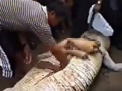 巨鳄被解剖后现惊人一幕 村民哭了