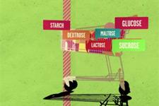 糖类怎样影响大脑