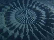 日本水域中的神秘怪圈
