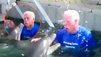 超搞笑老头与海豚用嘴喷水玩打水战