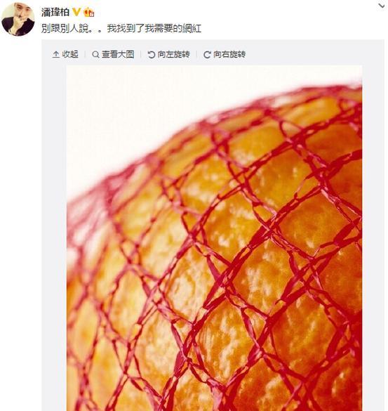 """【爆料】潘玮柏也变段子手 称找到自己需要的""""网红"""""""