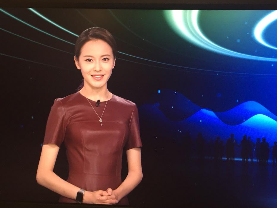 凤凰卫视美女主持人艾楚怡美图