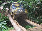 赛车手深入马来西亚原始丛林迎各种挑战