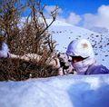 新疆边防雪地伪装