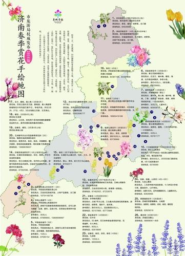 济南春季赏花手绘地图发布