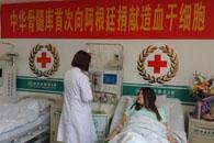 开封姑娘为阿根廷男童捐干细胞 系中国首例