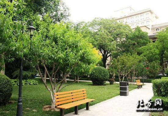 天津百年欧式公园 解放北园赏芍药花儿