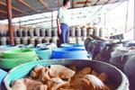 郑州查获两万斤工业盐浸泡毒蘑菇