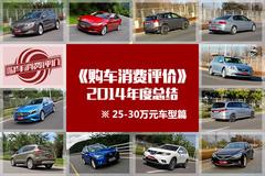购车消费评价年度总结:25-30万车型